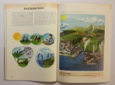 illustrations (11) (Custom)
